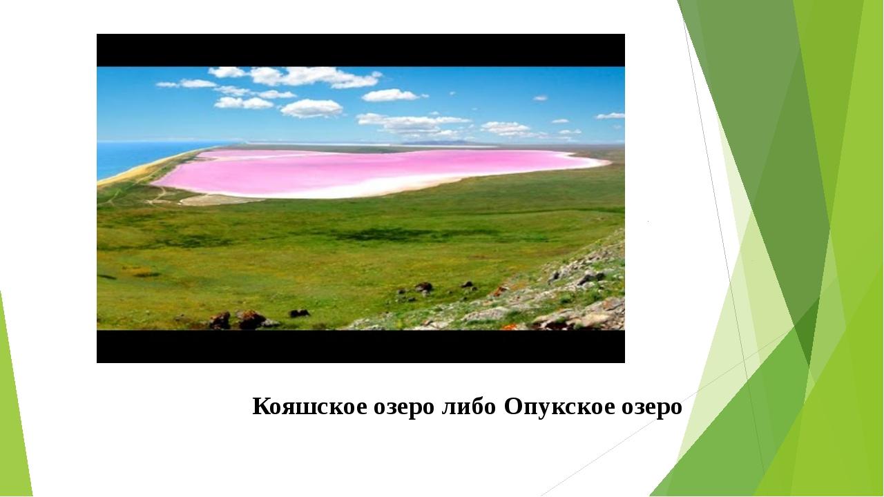 Кояшское озеро либо Опукское озеро