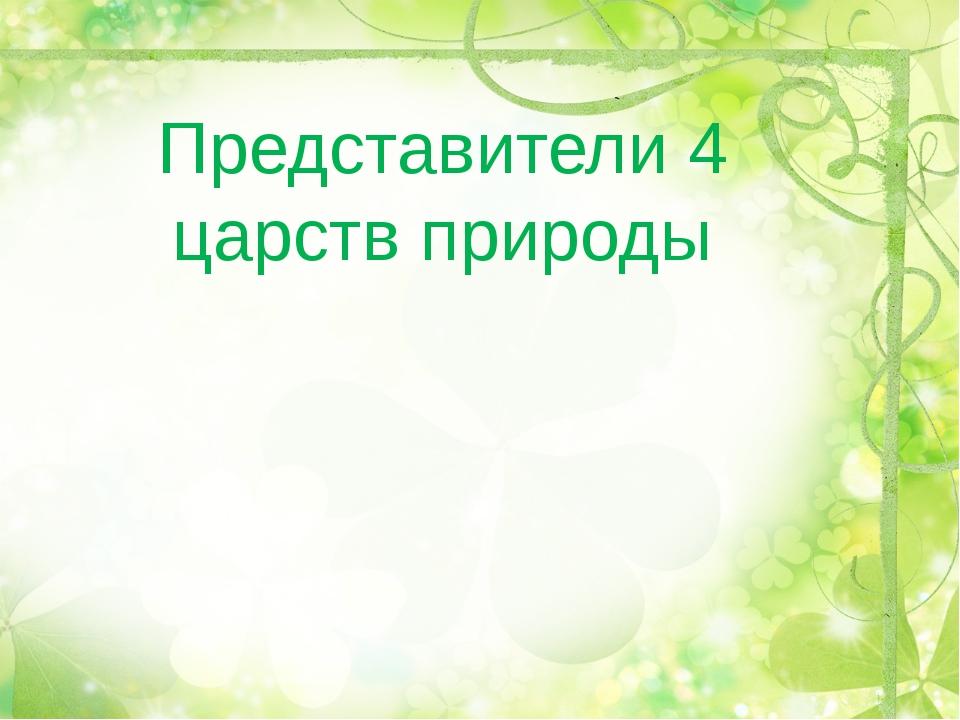 Представители 4 царств природы