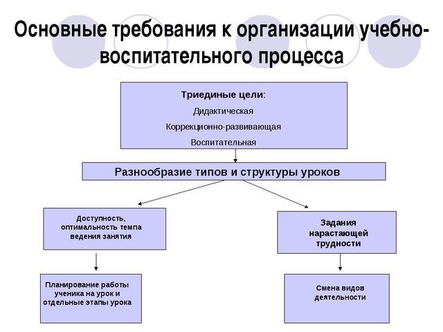 Основные требования к организации учебно-воспитательного процесса Триединые ц...