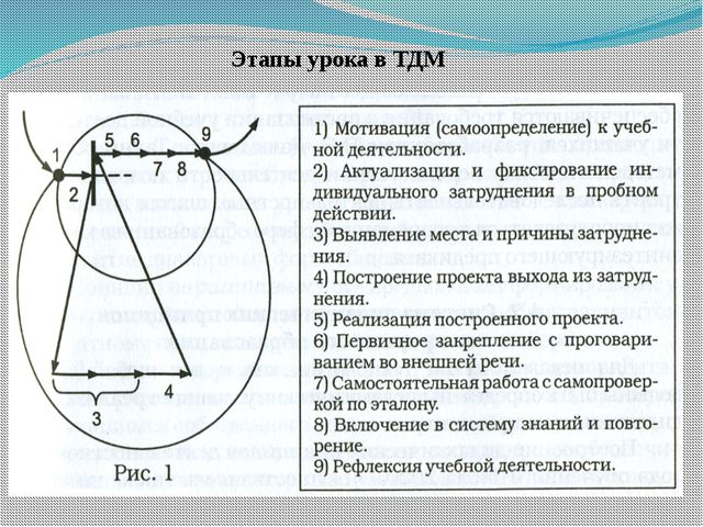 Этапы урока в ТДМ