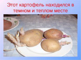 Этот картофель находился в темном и теплом месте
