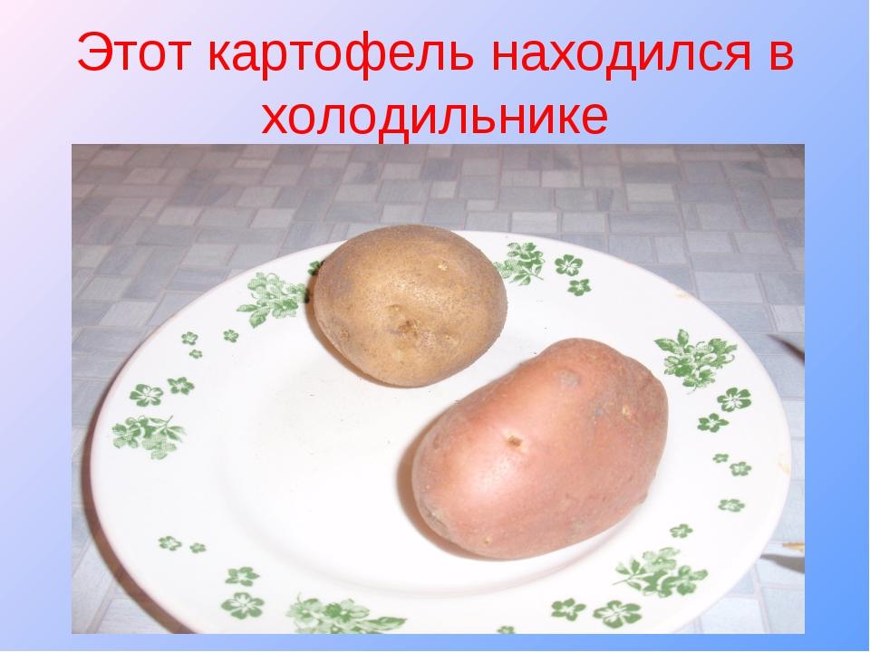 Этот картофель находился в холодильнике