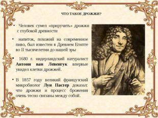 ЧТО ТАКОЕ ДРОЖЖИ? Человек сумел «приручить» дрожжи с глубокой древности напи