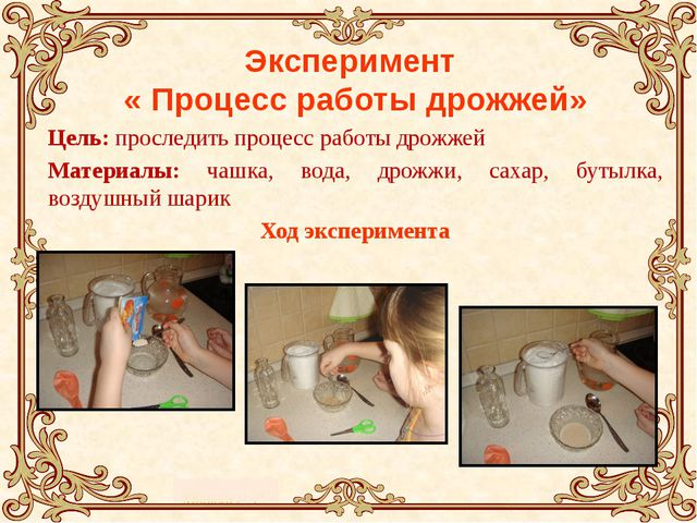 Эксперимент « Процесс работы дрожжей» Цель: проследить процесс работы дрожжей...