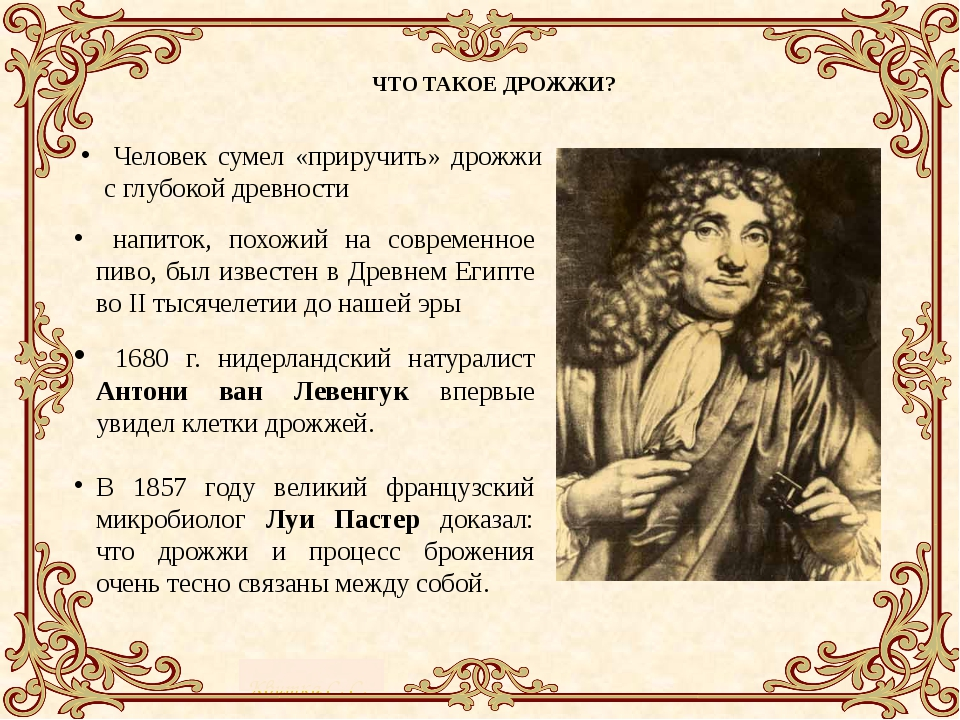 ЧТО ТАКОЕ ДРОЖЖИ? Человек сумел «приручить» дрожжи с глубокой древности напи...