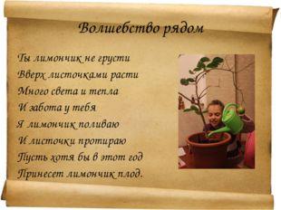 Волшебство рядом Ты лимончик не грусти Вверх листочками расти Много света и т