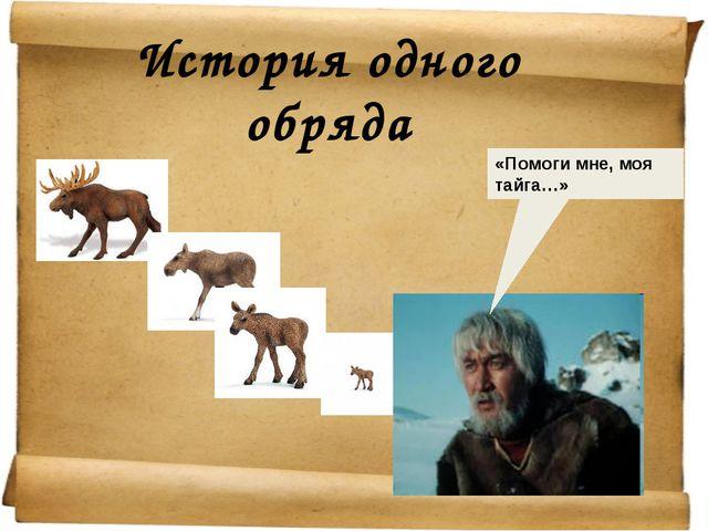 История одного обряда «Помоги мне, моя тайга…»