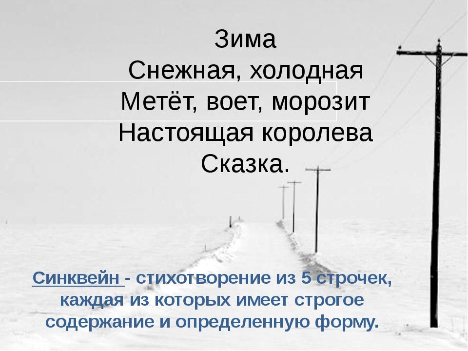 Зима Снежная, холодная Метёт, воет, морозит Настоящая королева Сказка. Синкв...