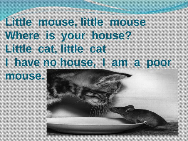 Little mouse, little mouse Where is your house? Little cat, little cat I have...