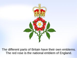 The different parts of Britain have their own emblems. The red rose is the na