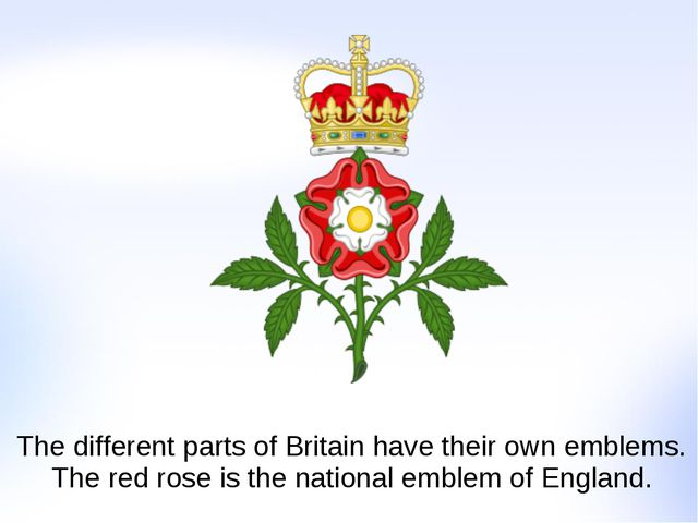 The different parts of Britain have their own emblems. The red rose is the na...