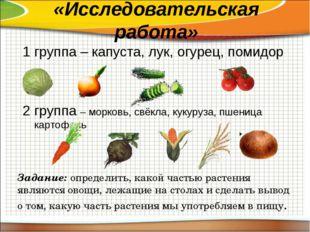 «Исследовательская работа» 1 группа – капуста, лук, огурец, помидор 2 группа