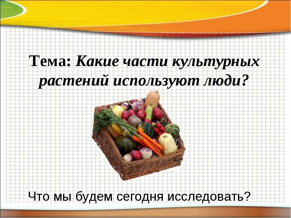 Тема: Какие части культурных растений используют люди? Что мы будем сегодня и...