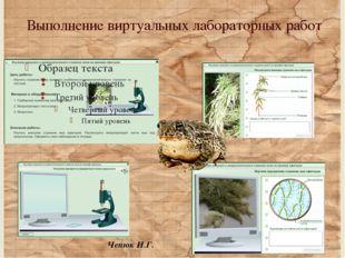 Выполнение виртуальных лабораторных работ Чепюк И.Г. 