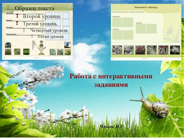Работа с интерактивными заданиями Чепюк И.Г. 
