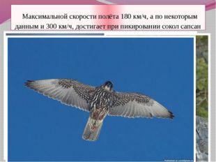 Максимальной скорости полёта 180 км/ч, а по некоторым данным и 300 км/ч, дос
