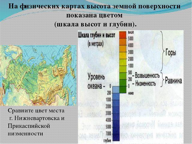 На физических картах высота земной поверхности показана цветом (шкала высот и...