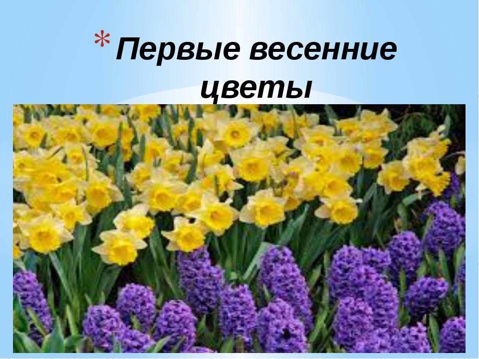 Первые весенние цветы