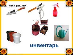инвентарь FokinaLida.75@mail.ru
