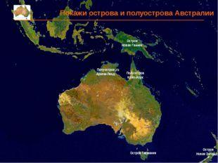 Покажи острова и полуострова Австралии Остров Тасмания Остров Новая Зеландия