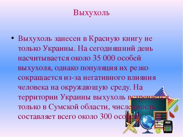 Выхухоль Выхухоль занесен в Красную книгу не только Украины. На сегодняшний д...