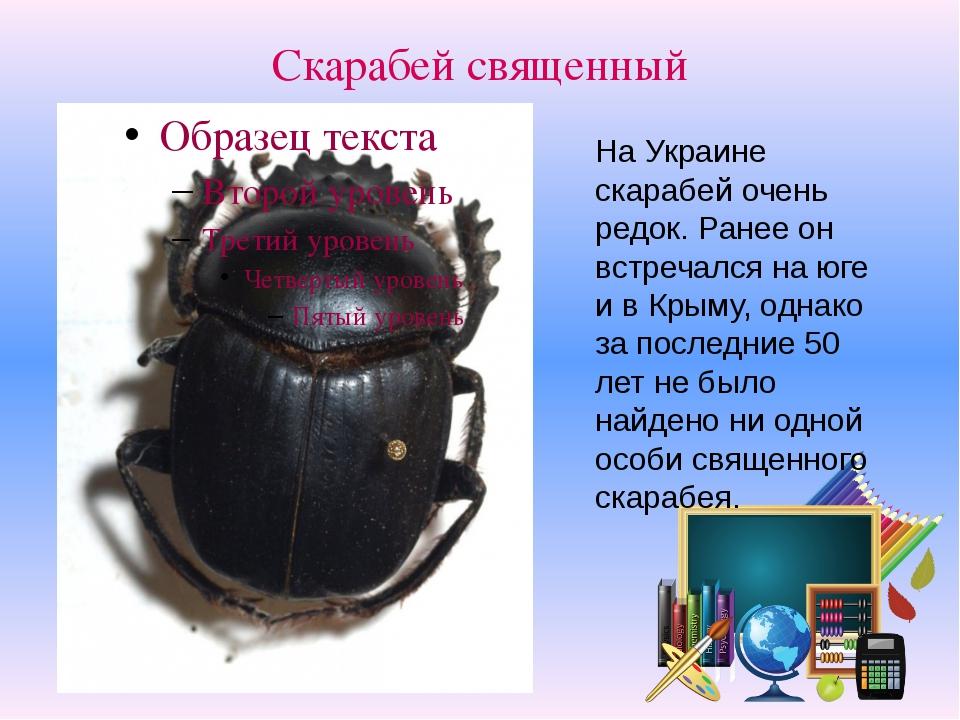 Скарабей священный На Украине скарабей очень редок. Ранее он встречался на юг...