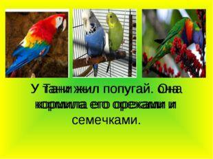 У тани жыл попугай. она кормила его орехами и семечками У Тани жил попугай. О