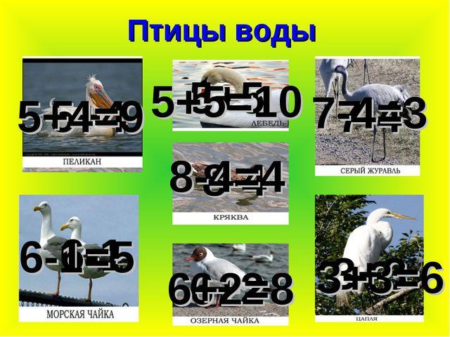 Птицы воды 6-1 5+4 8-4 5+5 7-4 6+2 5+4=9 6-1=5 5+5=10 8-4=4 6+2=8 7-4=3 3+3 3...