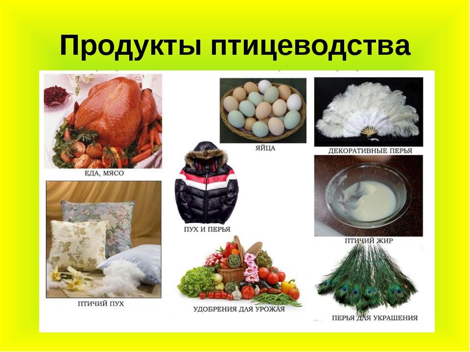 Продукты птицеводства