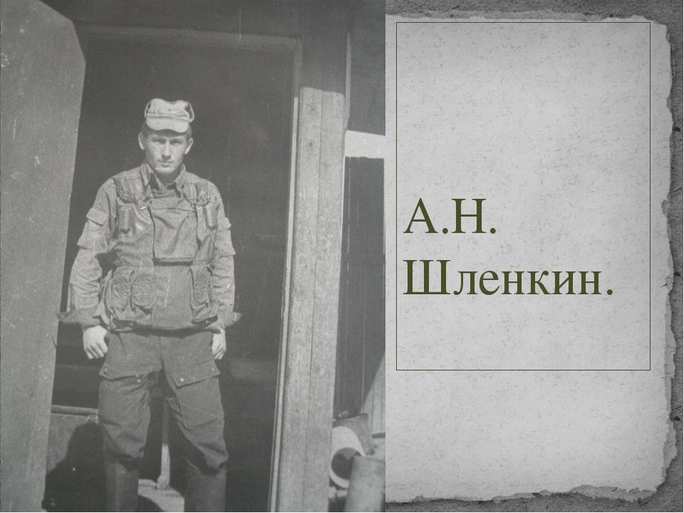 А.Н. Шленкин.