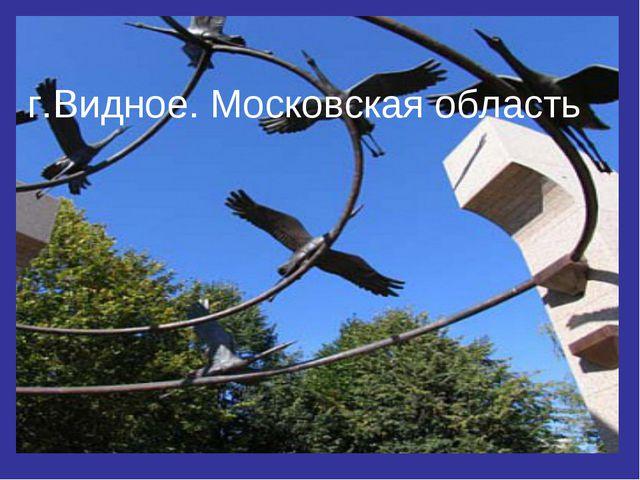 г.Видное. Московская область