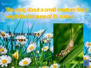 """""""Я на солнышке лежу» The song about the animal, which is singing a song and"""