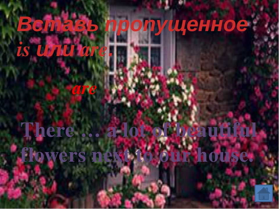 Вставь пропущенное is или are. There … a lot of beautiful flowers next to ou...
