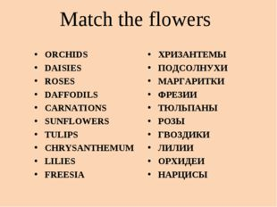 Match the flowers ORCHIDS DAISIES ROSES DAFFODILS CARNATIONS SUNFLOWERS TULIP
