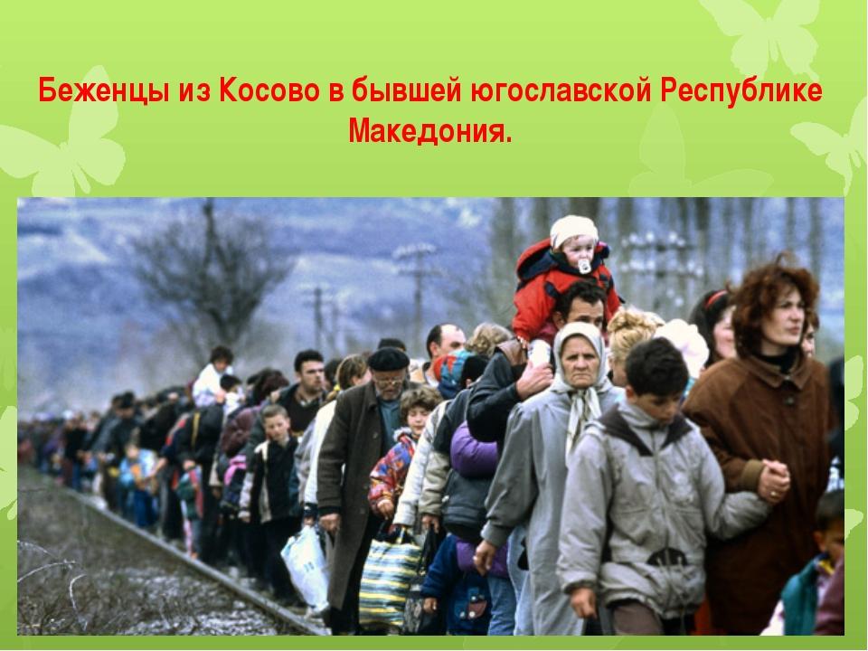 Беженцы из Косово в бывшей югославской Республике Македония.