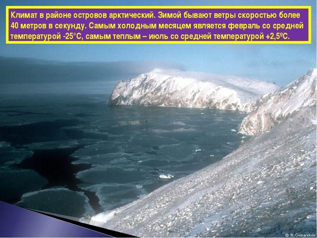 Климат в районе островов арктический. Зимой бывают ветры скоростью более 40 м...