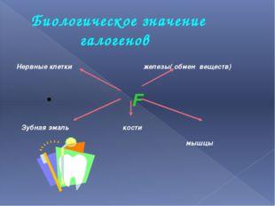 Биологическое значение галогенов Нервные клетки железы( обмен веществ) F Зубн