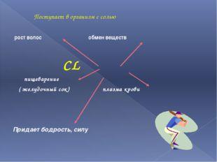 Поступает в организм с солью рост волос обмен веществ CL пищеварение ( желуд