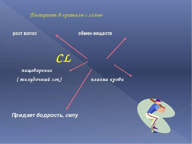 Поступает в организм с солью рост волос обмен веществ CL пищеварение ( желуд...