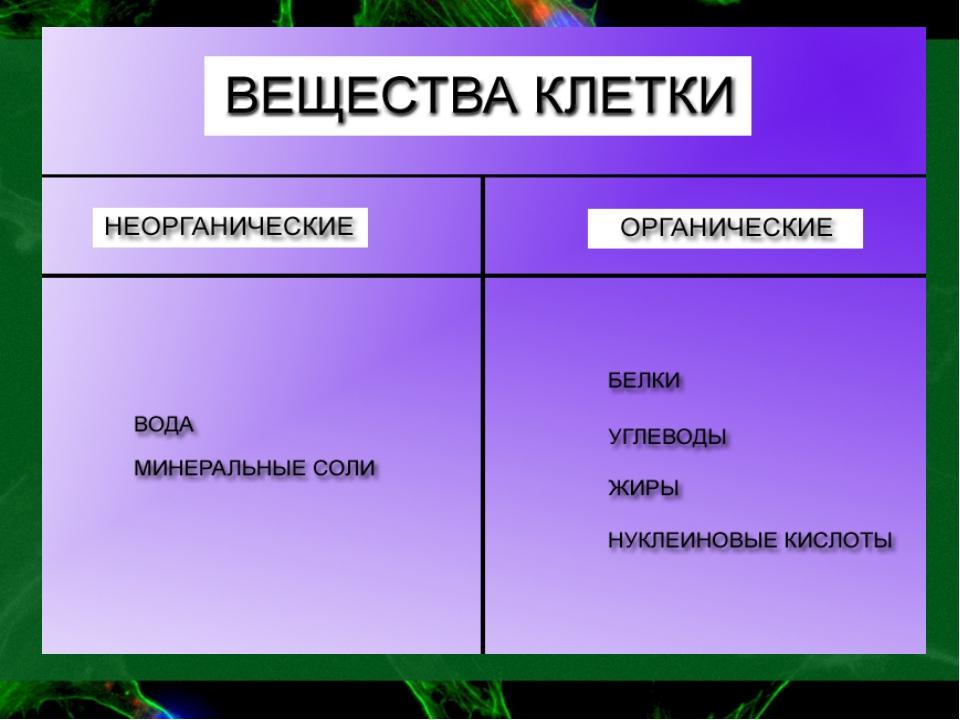 Таблица неорганические вещества клетки биология