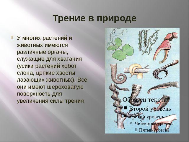 Трение в природе У многих растений и животных имеются различные органы, служа...