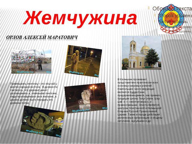 Жемчужина В Калмыкии проживают представители практически всех основных мировы...
