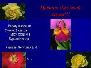 Цветок для моей мамы!!! Работу выполнил Ученик 2 класса МОУ СОШ №8 Бурьян Ник