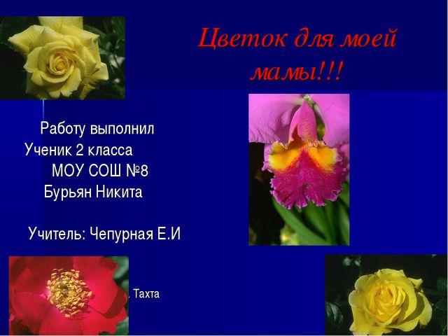 Цветок для моей мамы!!! Работу выполнил Ученик 2 класса МОУ СОШ №8 Бурьян Ник...