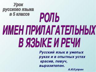 Русский язык в умелых руках и в опытных устах красив, певуч, выразителен.