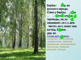 Берёза - дер..во русского народа. Ствол у берёзы , к..ра , . ветви, словно ги