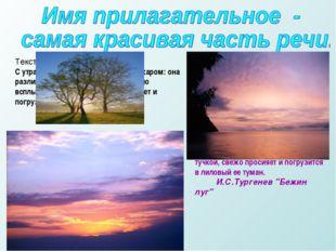 Текст 1. С утра небо ясно; заря не пылает пожаром: она разливается румянцем.