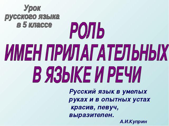 Русский язык в умелых руках и в опытных устах красив, певуч, выразителен....