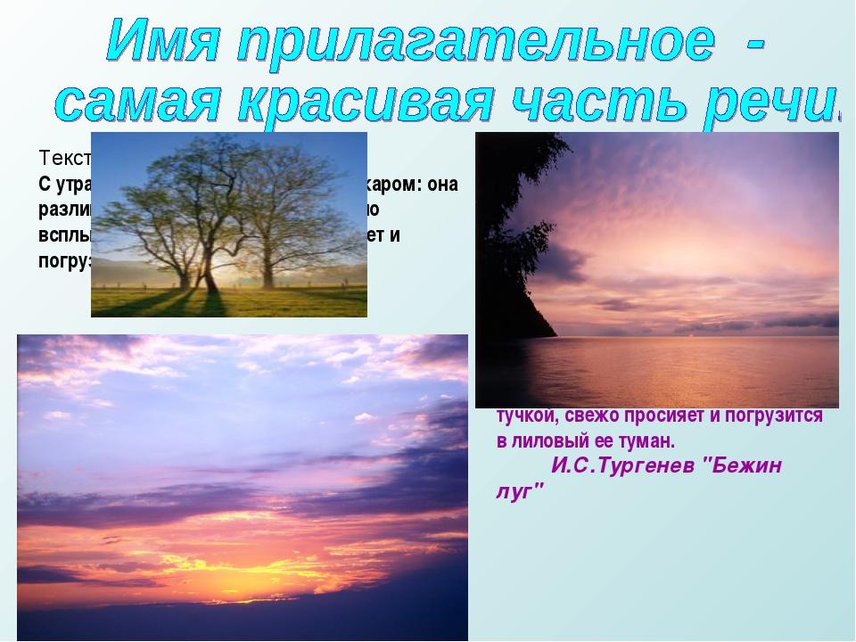 Текст 1. С утра небо ясно; заря не пылает пожаром: она разливается румянцем....