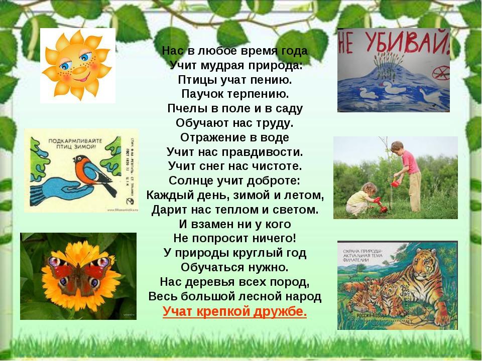 Нас в любое время года Учит мудрая природа: Птицы учат пению. Паучок терпению...
